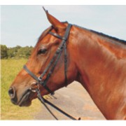 Bridle Flat Cavesson Nose Band