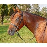 Cant-a Snaffle Bridle with A  Flat Noseband