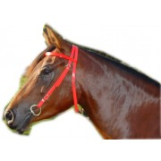 PVC Race Bridle ( head only ) 1/2""