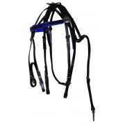 Trotting Bridle With Headcheck